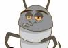 Simply Pest & Termites