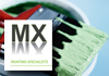 MX Painting Specialists