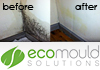 Ecomould Solutions - Mould Removal Services