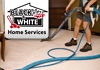 Expert Carpet & Upholstery Cleaning