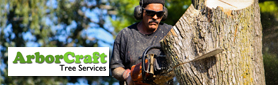 ArborCraft Tree Services Pty Ltd - Arborist & Tree Management Specialists