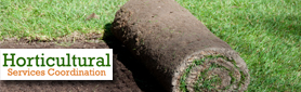 Are You Looking For A Quality Landscaping & Gardening Service?