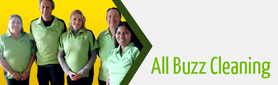 All Buzz Domestic Services