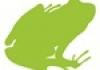 Bullfrog Constructions