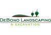De Bono Landscapes