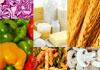 Click for more details about DETOXologie - Food Intolerance Testing