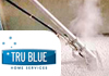 True Blue - Carpet and Upholstery Cleaning