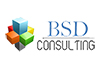 BSD Consulting
