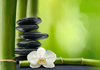 Click for more details about Body & Soul Health Centre - Traditional Chinese Medicine