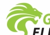 Green Lion Electrical