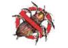 First National Pest Management Services