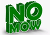 No Mow Synthetic Turf