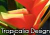 Tropicalia Design
