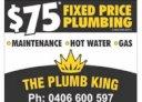 The Plumb King