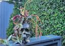 On-Time Gardening