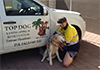 Top Dog Landscaping and Reticulation