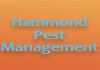 Hammond Pest Management