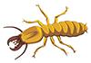 Easy Termite Control