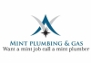Mint plumbing & gas