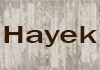 Hayek Cement Rendering