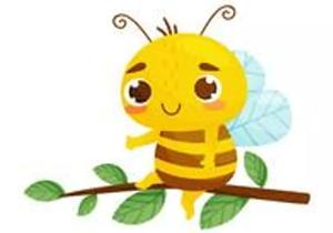 Capital Tree Surgery