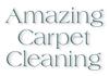 Amazing Carpet Cleanig and Pest Control