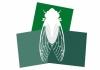 Cicada Creations