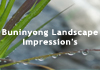 Buninyong Landscape Impressions