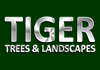 Tiger Trees & Landscapes