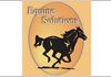 EQUINE SOLUTIONS AUSTRALIA PTY LTD