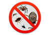 Trax Pest Managment