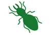 Schuberts Pest Services