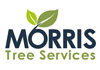 Morris' Quickest & Cheapest Tree Services