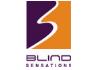 Blind Sensations
