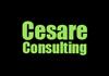 Cesare Consulting