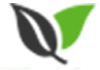 Sydney Metro Tree Solutions