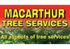 Macarthur Tree Services