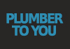 Plumber To You