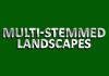 Multi-Stemmed Landscapes