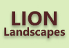 LION GROUP CONSTRUCTIONS