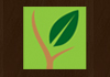 Eco Timber Plus