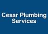 Cesar Plumbing Services