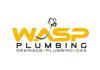 Wasp Plumbing