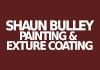 Shaun Bulley Painting & Texture coating