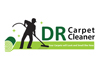 Rug Scrubbers Carpet Cleaning