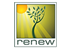 Renew Energy - Solar Industry