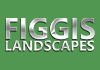 Figgis landscapes