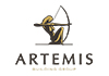 Artemis Building Group