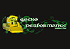 Gecko Performance