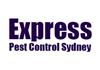 Express Pest Control Sydney